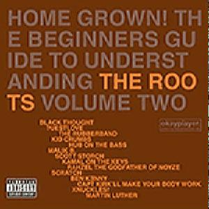 The Roots - Home Grown! The Beginners Guide To CD2