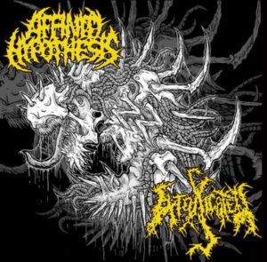 Affinity Hypothesis / Intoxicated - Split CD (2012)