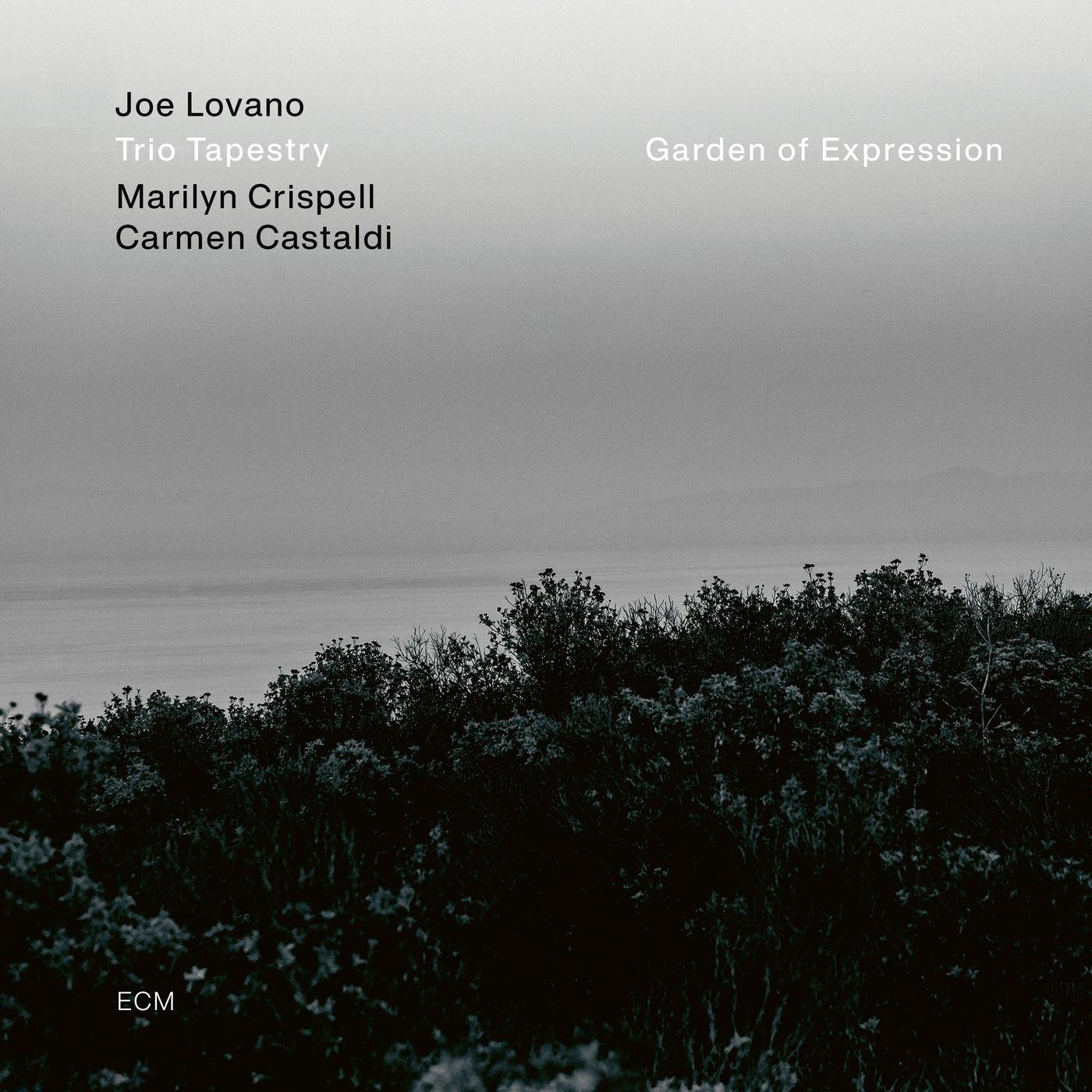 Joe Lovano, Marilyn Crispell, Carmen Castaldi - Garden of Expression (2021)
