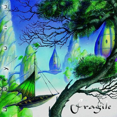 Fragile - Beyond (2021)